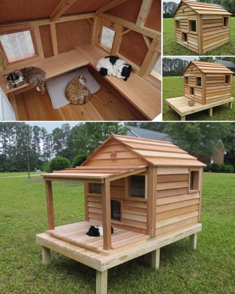 Outdoor Cat House Bungalow